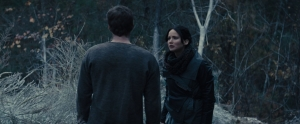 normal_catchingfire_02928